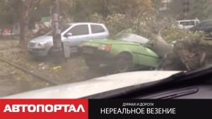 Везунчики автомобильных происшествий