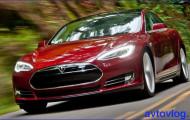 Операция по извлечению маленького пушистика из «недр» Tesla Model S прошла успешно